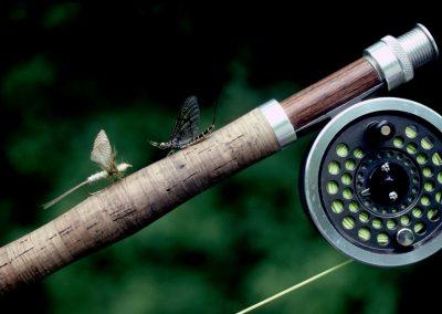 ppt Green drake and Green Drake Dun fly pattern on rod grip 78
